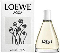 Photo of Loewe Agua 44.2