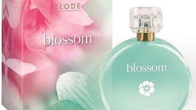 Photo of Elode Blossom