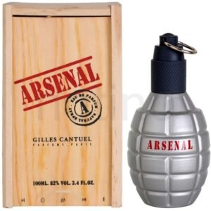 Gilles Cantuel Arsenal Grey