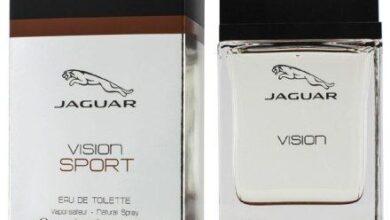 Photo of Jaguar Vision Sport
