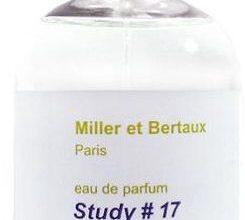 Photo of Miller et Bertaux Study #17