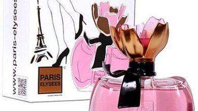 Photo of Paris Elysees La Petite Fleur D'Amour