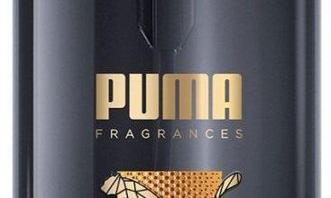 Photo of Puma Live Big